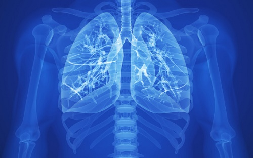 http://www.mesoth.net/2016/05/mesothelioma-asbestos-lung-cancer.html