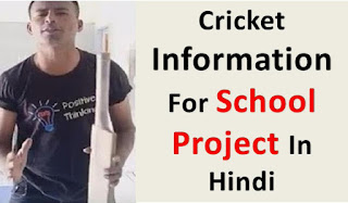 Cricket Information for Hindi Language |  Kids School Project