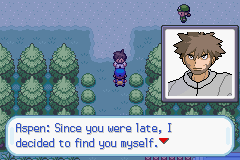 pokemon wish screenshot 1
