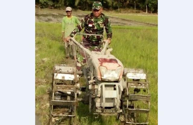 Jelang Musim Tanam Padi di Sunggal, Babinsa Dampingi Poktan Mengolah Lahan Dengan Trantor
