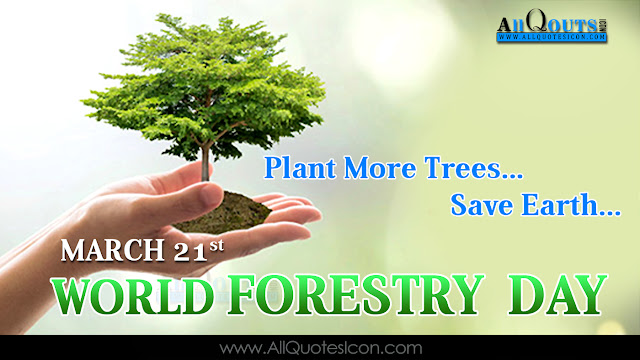 English-World-Forestry-Day-Images-Whatsapp-Pictures-Facebook-Status-Cover-Latest-New-Nice-Pictures-Awesome-English-Quotes-Motivational-Messages