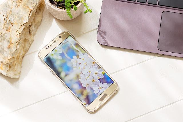 Free Wallpaper, Samsung Galaxy S6, Samsung S7, Samsung Galaxy Note 5, Nexus 6P, backdrop, wallpapers, WQHD, 2560x1440, nature, TorriPhoto, Forest, flowers, green, обои, рабочий стол, скачать
