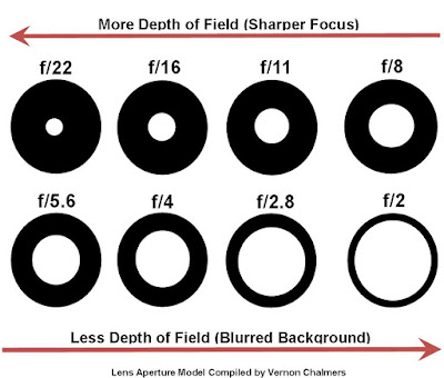 Introduction to the Exposure Triangle: ISO / Aperture / Shutter Speed