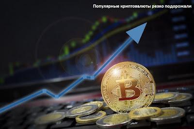 Популярные криптовалюты резко подорожали