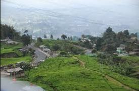 Desa Jelekong, Ubud-nya Jawa Barat