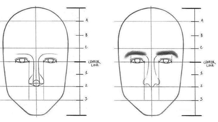 Langkah 5 menggambar wajah: membuat detail alis