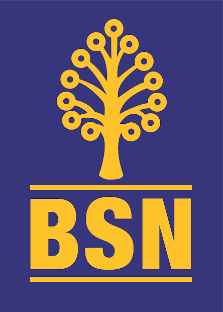Bank Simpanan Nasional Bsn