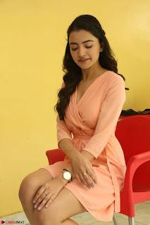 Rukshar Mir in a Peachy Deep Neck Short Dress 013.JPG