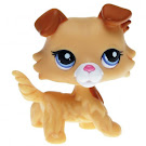 Littlest Pet Shop Blind Bags Collie (#2452) Pet