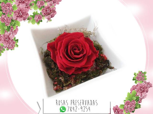 Centros de Mesa con Rosas Preservadas Arreglos Decoración Manualidades