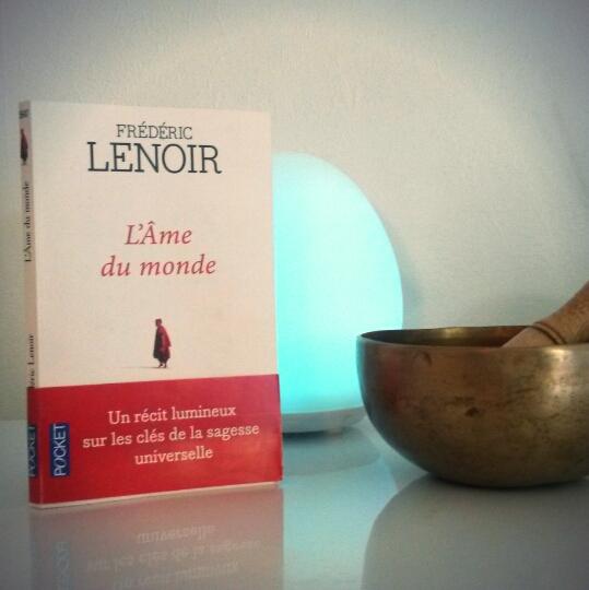 L'Âme du monde de Frédéric Lenoir : sur le chemin de la sagesse universelle