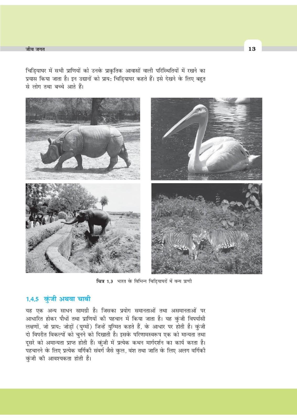Biology textbook pdf class 11
