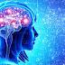 Efectos de la mente en la biología
