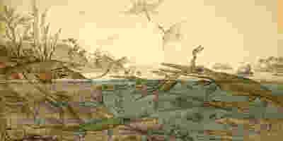 Rápido aumento dos dragões-marinhos do Mesozóico
