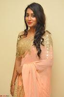 Bhanu Shri looks stunning in Beig Saree choli at Kalamandir Foundation 7th anniversary Celebrations ~  Actress Galleries 025.JPG