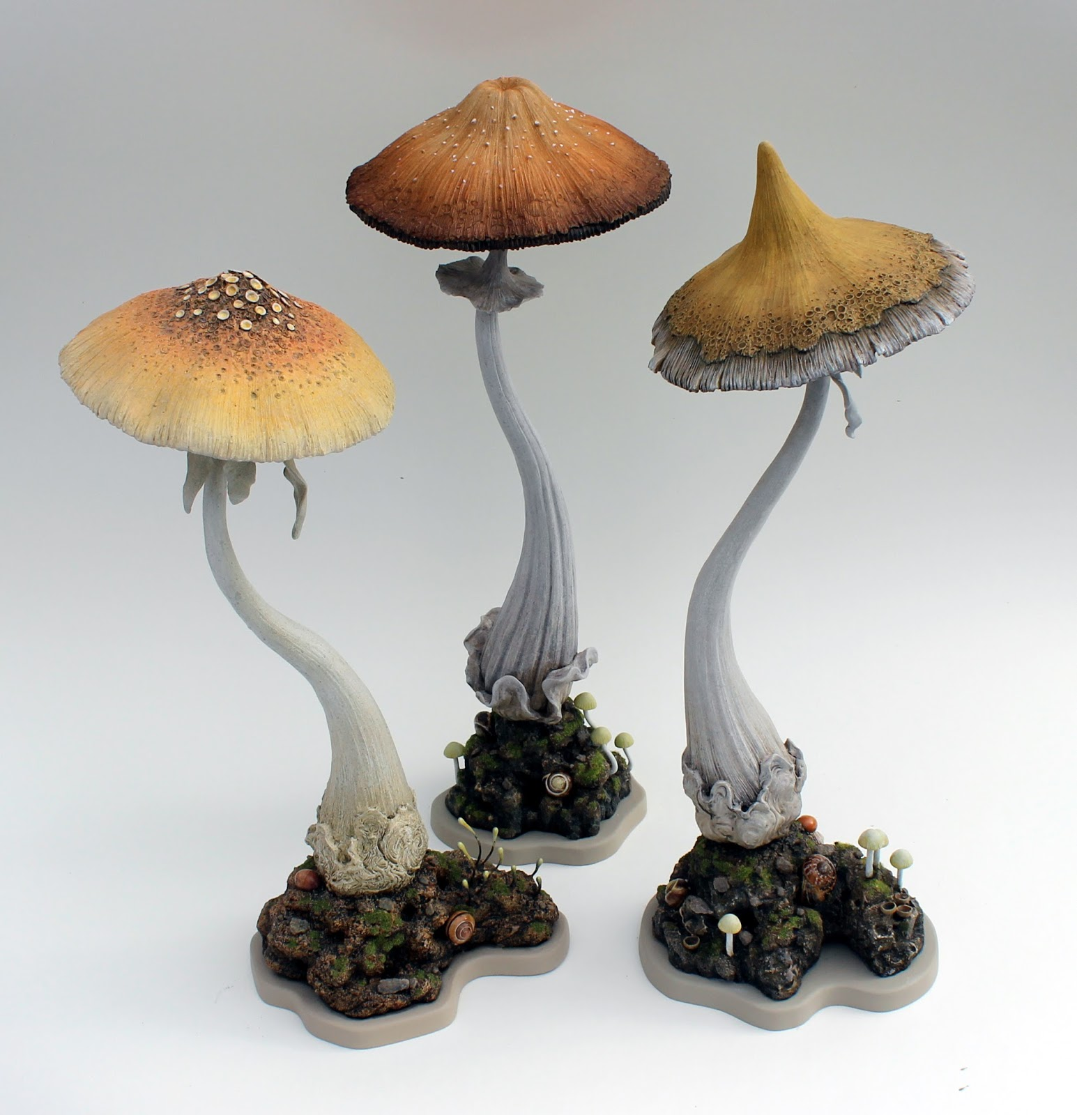 amazoncom magical mushrooms mischievous molds