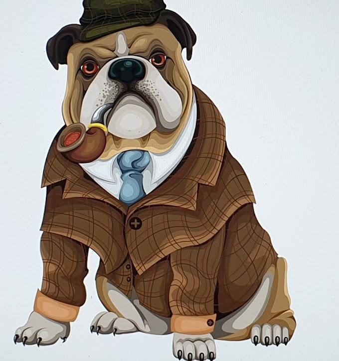 Köpeklerin kendisine Kötü Davranan birini Unutmadığını Biliyormuydunuz.