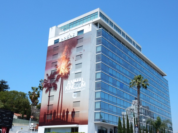 Giant Animal Kingdom series launch billboard Sunset Strip