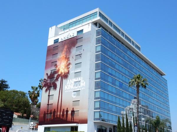 Giant Animal Kingdom series launch billboard Sunset Strip