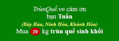 Trùn quế về Bảy Búa (Khánh Hòa)