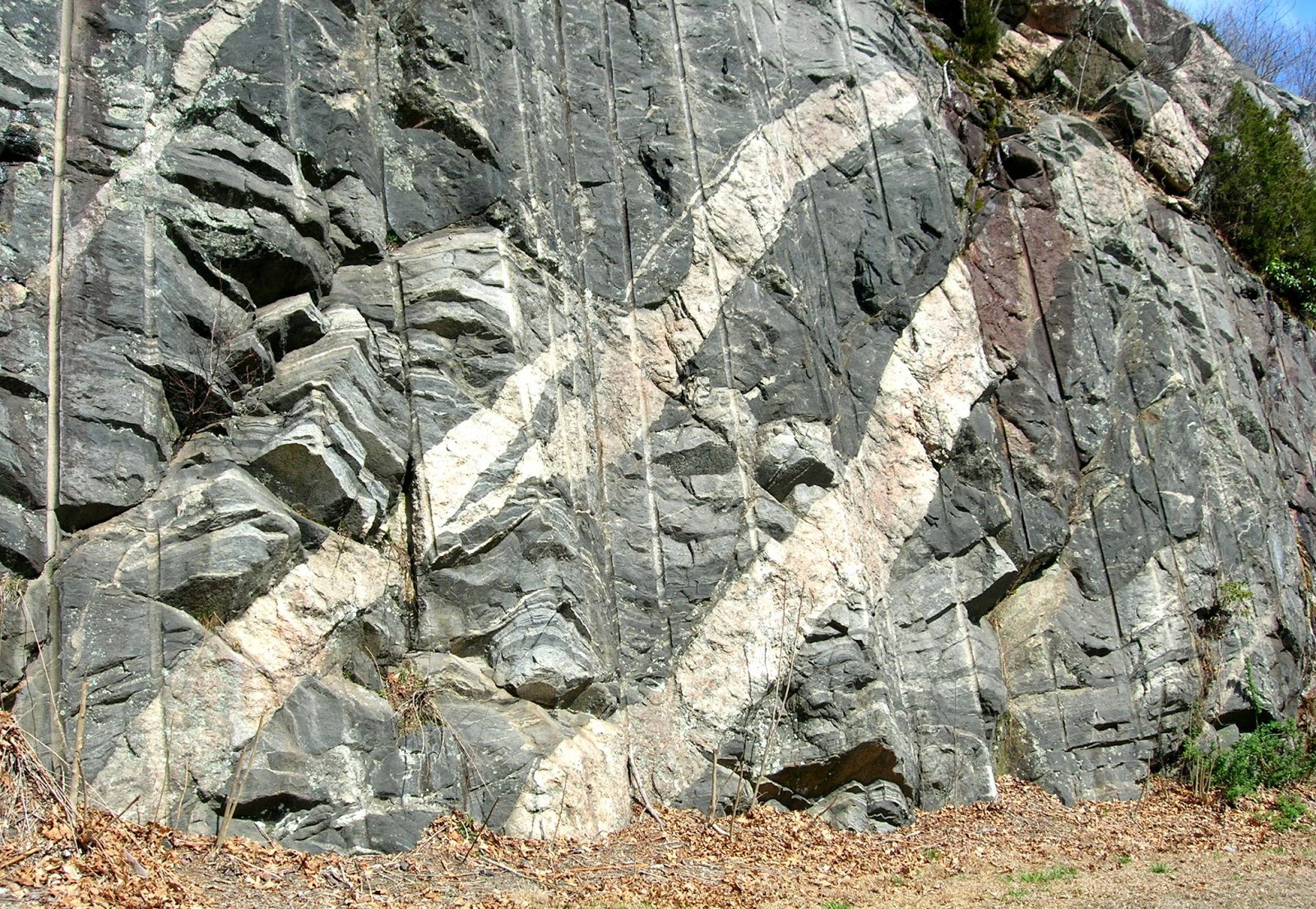 Image result for images of an igneous pegmatite dike