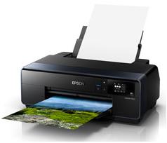 Epson SureColor P600 Driver Download