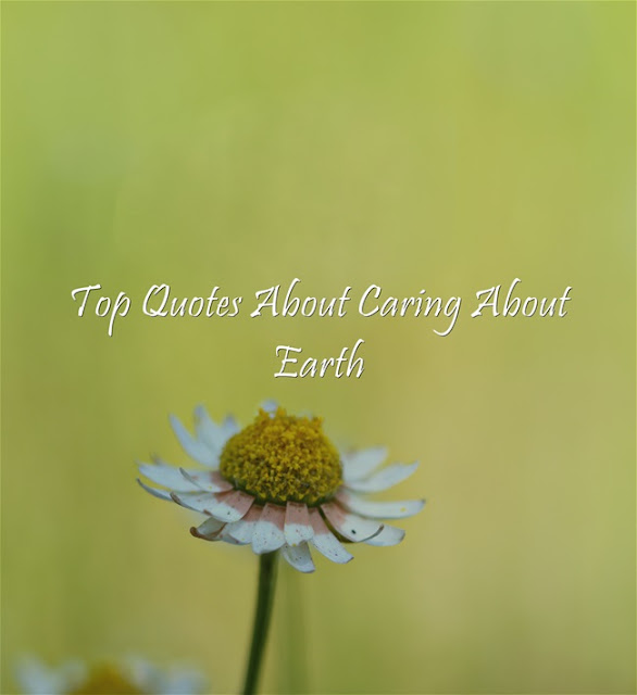 Top Quotes About Caring About Earth