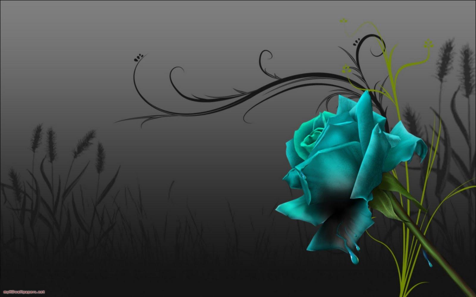Hd wallpaper of blue rose hd wallpapers - Blue rose hd wallpaper download ...