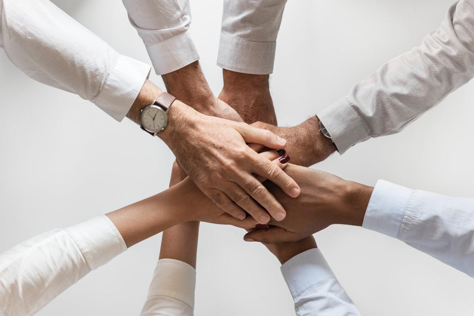 team di bisnis online