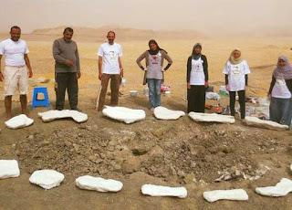 معلومات  قصة اكتشاف الديناصور المصري منصوراصورس في الصحراء الغربية