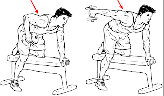kickbacks,movements for triceps