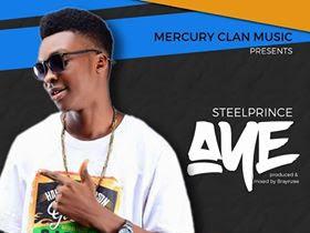 [MUSIC]: Steel Prince- Aye