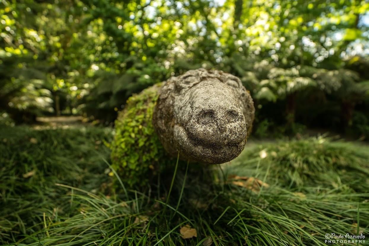 Escultura de um animal no Parque Terra Nostra