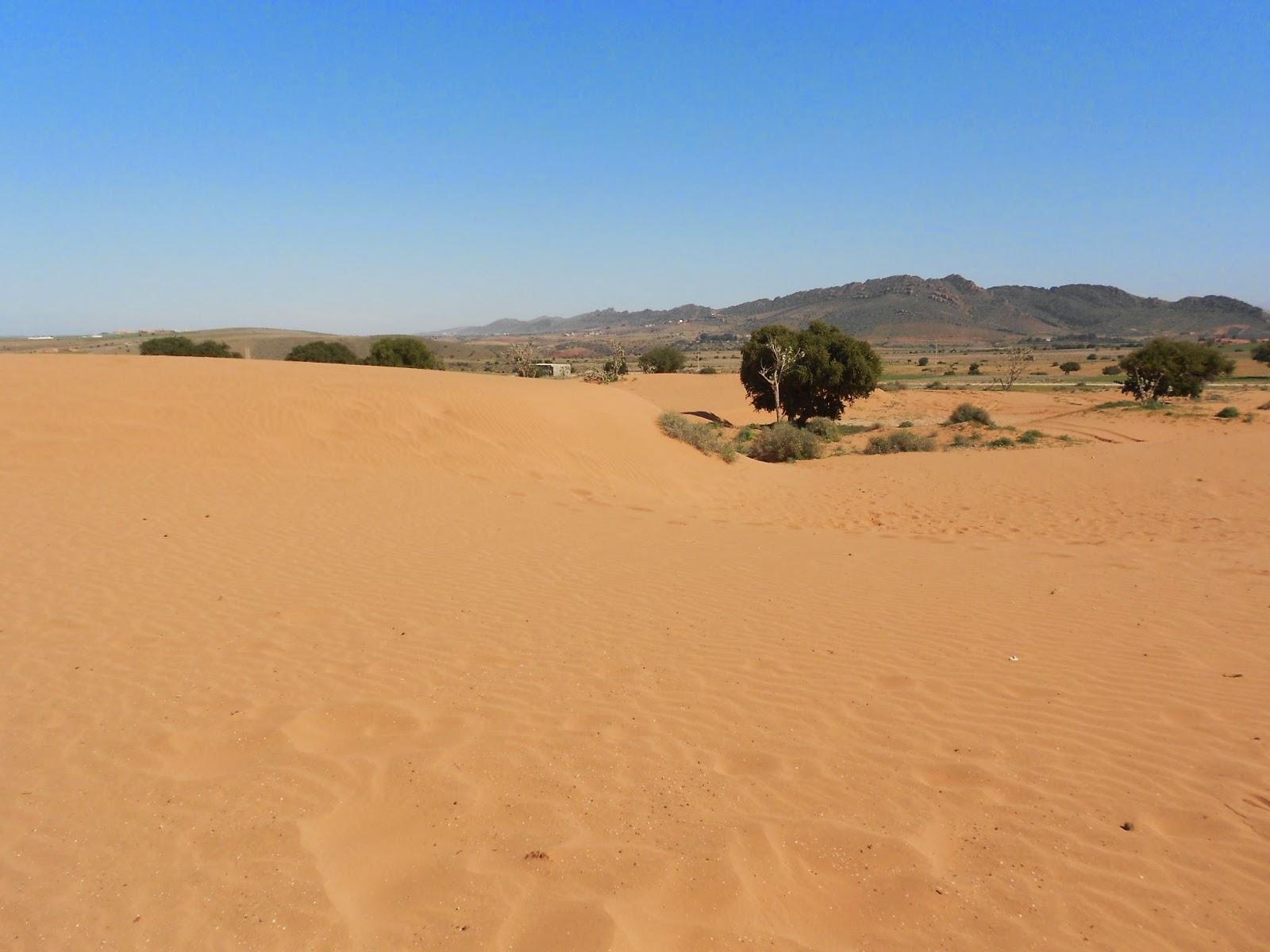 désert - Agadir - Morocco