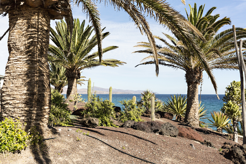 Canary Islands, island, Fuerteventura, holiday, beach, Visualaddict, valokuvaaja, Frida Steiner, photographer, nature, outdoors, luonto, Kanariansaaret, loma, aurinkoloma, sun, sea, aurinko, ranta, lomamatka