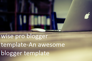 wise_pro_blogger_template