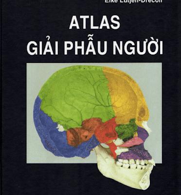 Atlas Giải phẫu người – Rohen&Yokochi – Bản Tiếng Việt