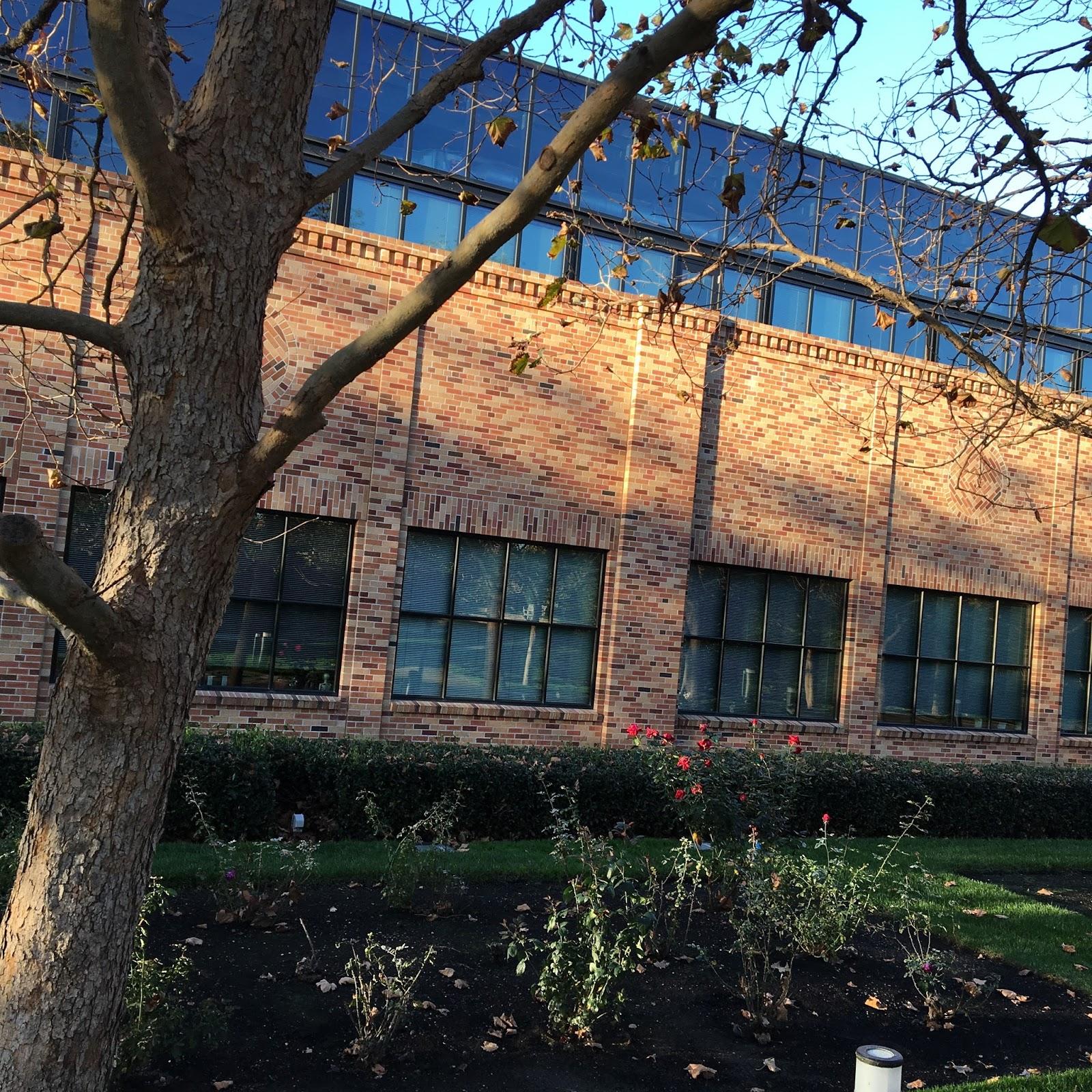 pixar studios steve jobs building 2017