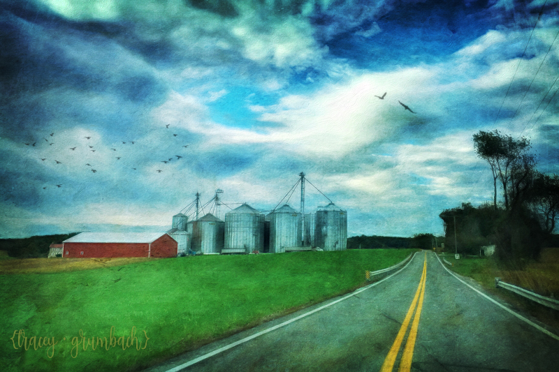 road leading to a farm with silos