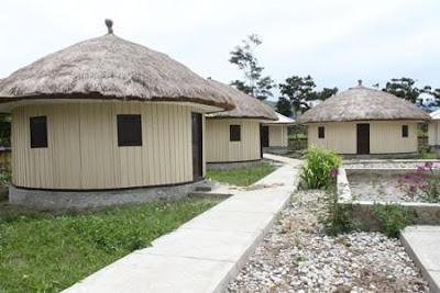 Uniknya Desain Rumah Adat Papua Honai