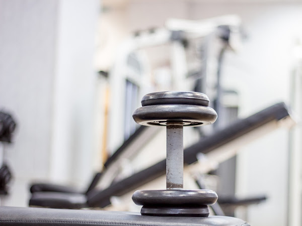 Taking The Fear Out Of Fitness: How To Own It In The Gym