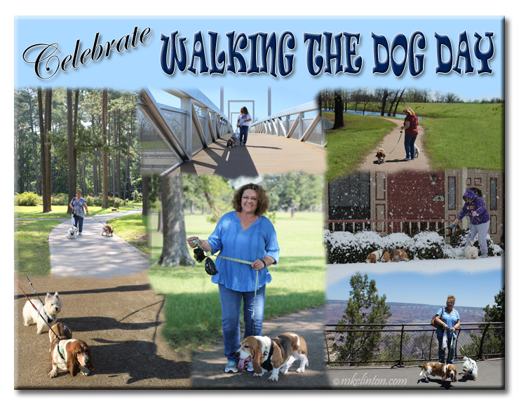 Celebrate Walking the Dog Day photo collage