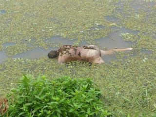 Agricultor é achado morto dentro de açude no interior da PB na manhã desta terça (15)