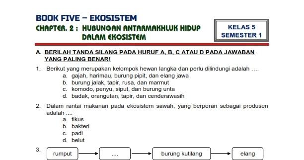 Download Soal Tematik Kelas 5 Semester 1 Tema 5 Subtema 2 Ekosistem Hubungan Antarmakhluk