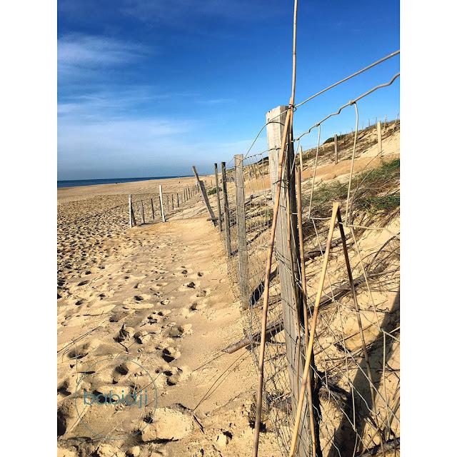 dune de sable à Seignosse le Penon