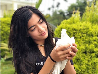 Actress Rashmika Mandanna Latest HD Images 2019-5