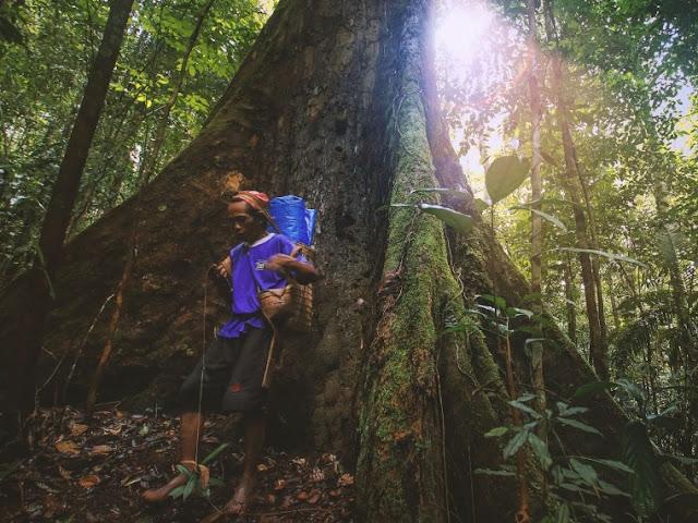 Liburan Bersama Keluarga Ke Pedalaman Kalimantan Tengah Lopus