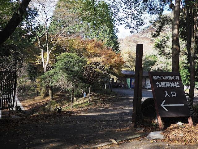 箱根九頭竜の森セラピーロード 九頭龍神社入口