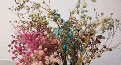 Paniculata teñida en diferentes colores