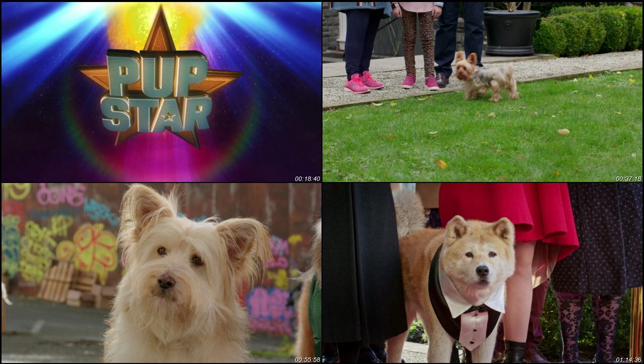 Pup Star: Better 2Gether 2017